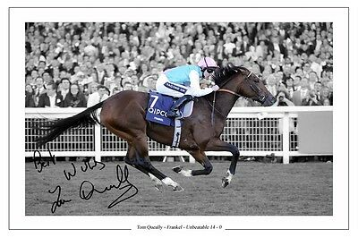 Tom Queally Frankel Autograph Signed Photo Print Poster