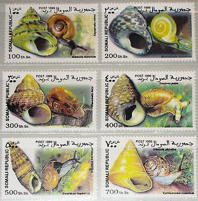SOMALI REPUBLIC 1999 unlisted set Shells Schnecken Helix Ponatia Fauna MNH