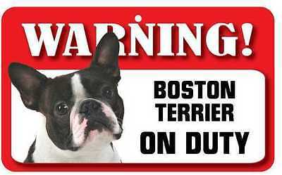 Boston Terrier Sign - Laminated Card -  Beware Of Dog 20cm x 12cm