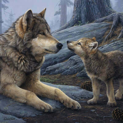 WOLF ART PRINT Brother Wolf (detail) - Daniel Smith 24x24 Wolves Wildlife Poster