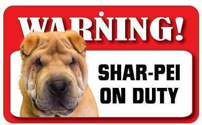 Shar-Pei Sign - Laminated Card - Beware Of Dog 20cm x 12cm