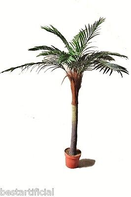 Best Artificial 180cm 6ft Palm Tree Tropical Plant Office Conservatory Plastic