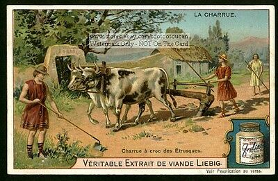 Eutruscan Farmers Plowing With Oxen c1903 Card