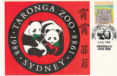 Stamp Australia 1988 Taronga Zoo maximum card showing Panda bears & postmark