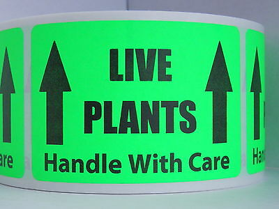 LIVE PLANTS HANDLE WITH CARE 2x3 Sticker Labes fluorescent green bkgd 250/rl