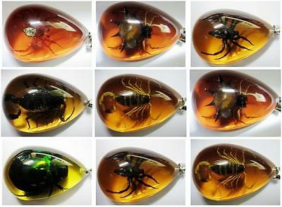 12pcs insect design real green beetle spider&scorpion mix amber drop pendants