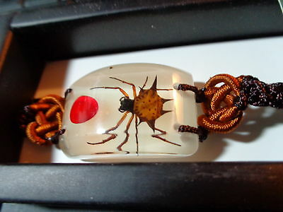 Spiny Spider w/ Red Seed GLOWING Adjustable Bracelet New In Box BL05G04