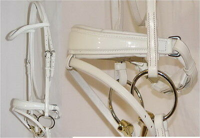 FSS WHITE Freisian Baroque German Comfort PATENT GLOSS Square Swelled Bridle NEW