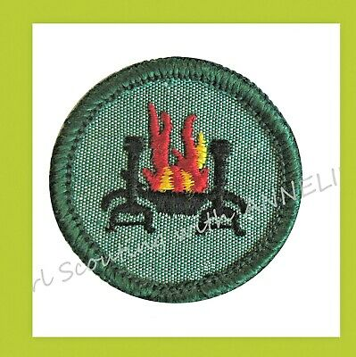 Magnificent Vintage Girl Scout 1938 1947 Home Health Safety Badge Download Free Architecture Designs Scobabritishbridgeorg