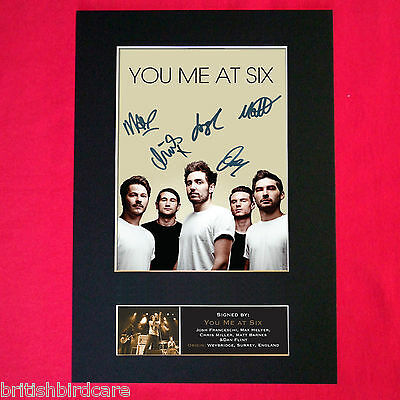 YOU ME AT SIX Signed Autograph Mounted Photo Repro A4 Print 421