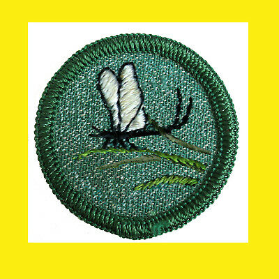 Merrow Edge Multi=1 Ship BASKETRY 1950s RARE Intermed Girl Scout Badge Finished