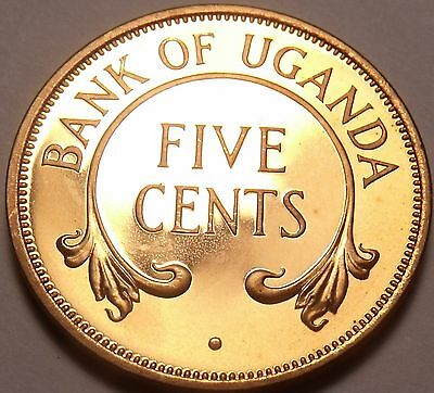 Rare Proof Uganda 1966 5 Cents~Only 8,250 Minted~Crossed Tusks~Free Shipping