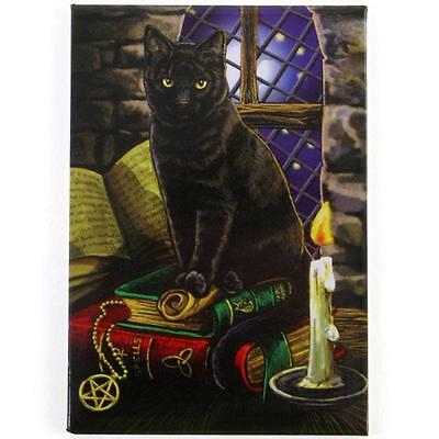 Witches Black Cat ( Spell Cat )  Fridge Magnet By Lisa Parker