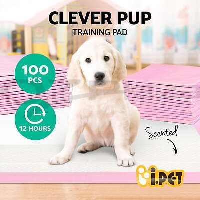 iPET Puppy Pet Dog Indoor Cat Toilet Training Pads Absorbent pink 100pcs