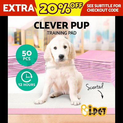 NEW Puppy Pet Dog Indoor Cat Toilet Training Pads Super Absorbent 60x60