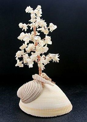 Large Natural White Coral Branches & Sea Shells Gem Tree MADE IN USA GT2