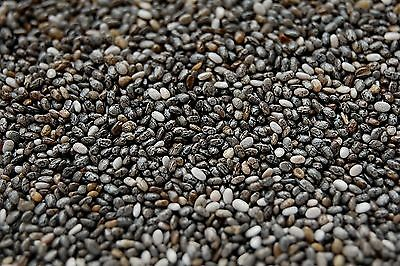 Chia Seeds Herb 1 ounce