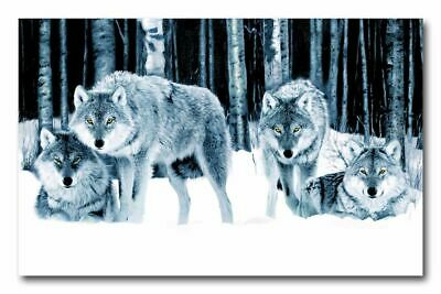 """Wolf Pack in Snow forest A4 CANVAS ART PRINT 8"""" X 12"""" poster"""