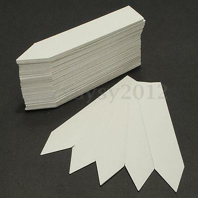 1 Pack of 100 Plant Pot Plastic Markers Garden Stake Tags Nursery Labels 4 Inch