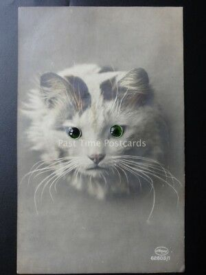 Novelty Postcard: CAT with Moving Green Eyes - Old Postcard by Amag No.62603/1