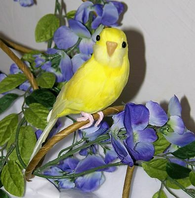 Canary Yellow BIRD PARAKEET For Sale BUDGIE REPLICA Collectible FAKE taxidermy