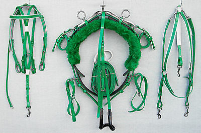 Mini Tiedown Trotting Harness - Green with White Trim
