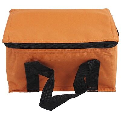 Travel Insulated Lunch Bag Cooler Bag Ice Boxes Collapsible Picnic Camping W
