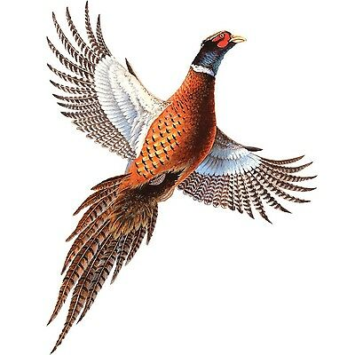 PHEASANT Auto/Truck Magnetic Art-Truck MAGNET Indoor/Outdoor