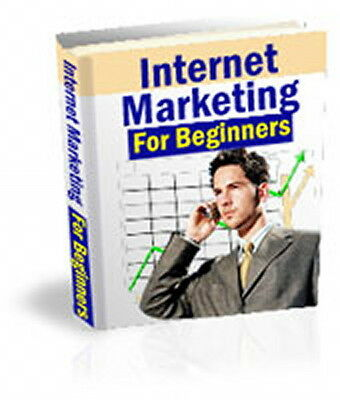 Quick Course On Internet Marketing For Beginners - Get A Head Start (CD ROM)
