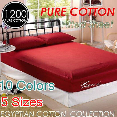 1200+ Hotel Quality Egyptian Cotton Single/Double/Queen/King Size Fitted Sheet
