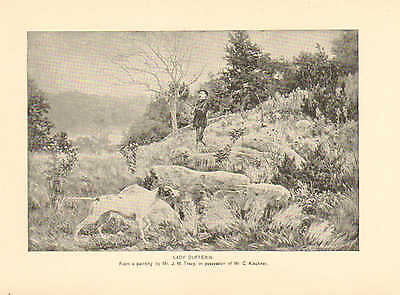 Hunting Dog, Pointer, On Point, Lady Dufferin, Vintage, 1891 Antique Art, Print,