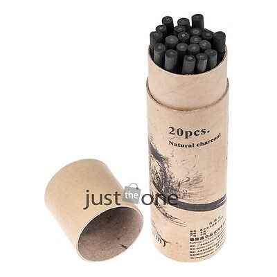 Chic 20 PCS Willow Charcoal Bar Pencils Sketch Drawing Painting Artist Black New