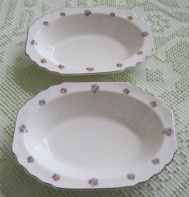 Two W. S. George Lido Floral Bordered Oval Vegetable Bowls