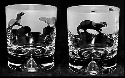 *OTTER GIFT* Boxed Pair of GLASS WHISKY TUMBLERS with OTTER FRIEZE