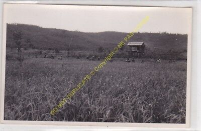 RPPC carte photo MADAGASCAR n16