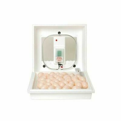 Miller Manufacturing Company 9300 Little Giant Still-Air Egg Incubator
