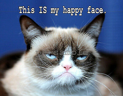 GRUMPY CAT -- Happy Face - Fridge Magnet
