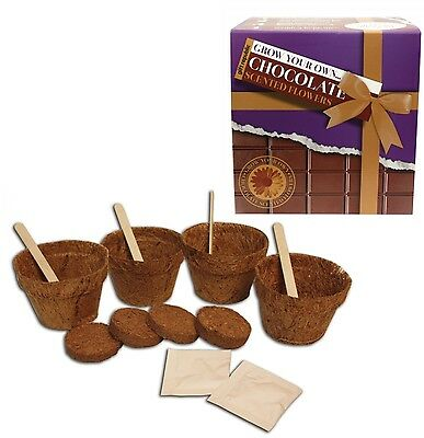 Gift Republic Grow Your Own Chocolate Scented Flowers Seeds Novelty Xmas Gift