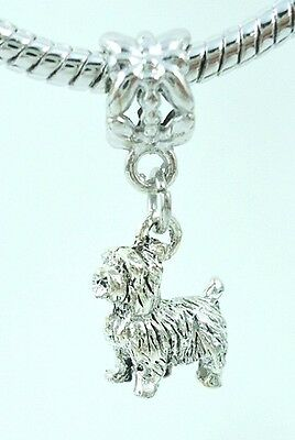 3D Terrier or Shih Tzu Dog Lover Slider Charm for European Bracelets Or Necklace