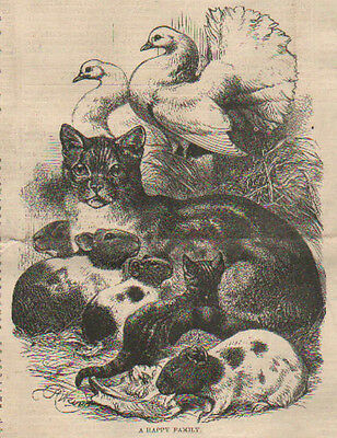 """Vintage CHUMS Kitch Girl with her Black Cat friends = Fine ART PRINT 8x12/"""" Kitty"""