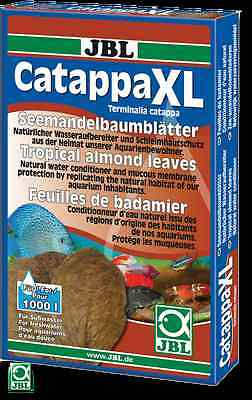JBL Catappa XL-Healing Indian almond leaves in the XL format