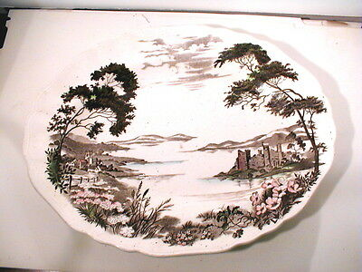 Rare Pink English Staffordshire Olde Avon Dale Oval Platter J&G Meakin England