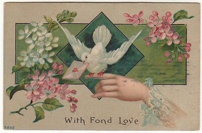 A BEAUTIFUL LADY'S HAND HOLDING A DOVE AND LETTER Original Vintage Art Postcard