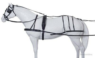 Horse Show Leather Driving Harness - Silver Spots  -Horse Size
