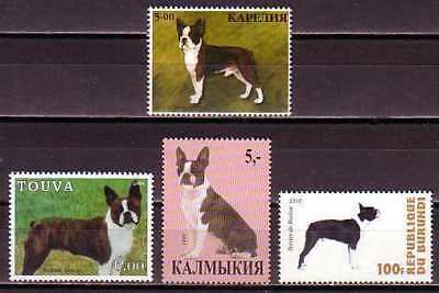 Boston Terrier Dogs 3 different MNH stamps BOSTE04