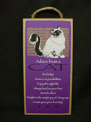 ADVICE FROM A CAT wood INSPIRATIONAL SIGN wall NOVELTY PLAQUE kitten Kitty NEW