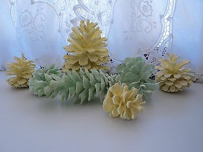 Set of 8 Shabby Pastel Yellow and Green Handpainted Pinecones Chic Cottage Decor
