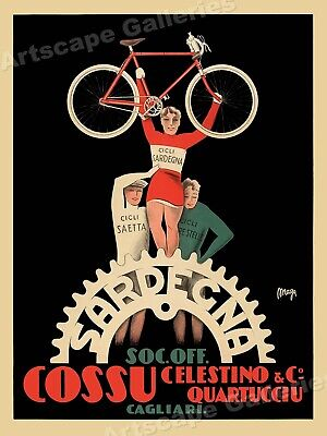 """1895 /""""Courses Velocipediques/"""" Vintage Style Bicycle Poster 20x28"""