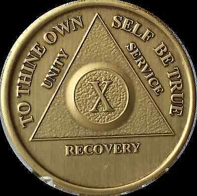 10 Year AA Medallion Alcoholics Anonymous Sobriety Chip X Ten Years Recovery