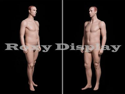 Fiberglass Male Display Mannequin Manikin Manequin Dummy Dress Form #PLUSMAN2